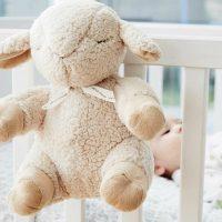 Cloud B Sleep Sheep Lifestyle