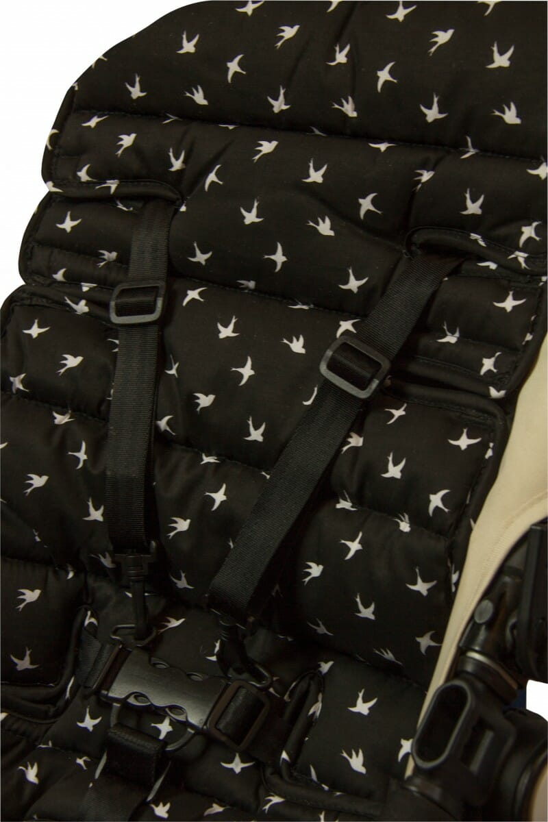 Black Swallows
