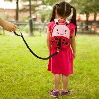 Skip Hop Ladybug Zoo Let Harness