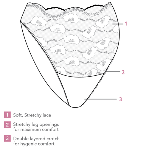 Carriwell Lace Stretch Panties Close Up Illustration