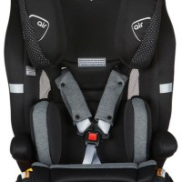 Safety 1st Sentry Harnessed Car Seat