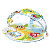 Skip Hop Explore and More Amazing Arch Activity Gym