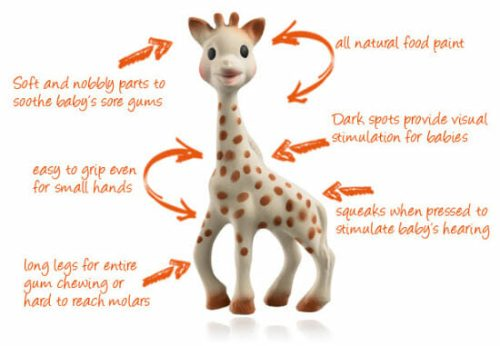 Sophie The Giraffe Diagram