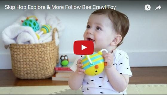 Skip Hop Explore & More Follow Bee Crawl Toy Video