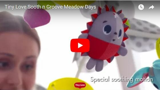 Tiny Love Sooth n Groove Meadow Days Video
