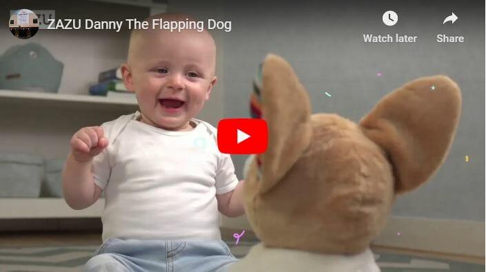 Zazu Danny Flapping Dog Video